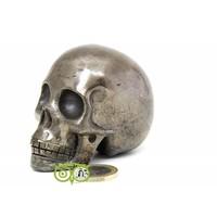 thumb-Pyriet schedel 461 gram-1