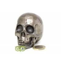 thumb-Pyriet schedel 461 gram-9