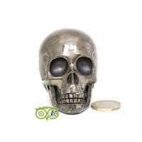 thumb-Pyriet schedel 461 gram-10