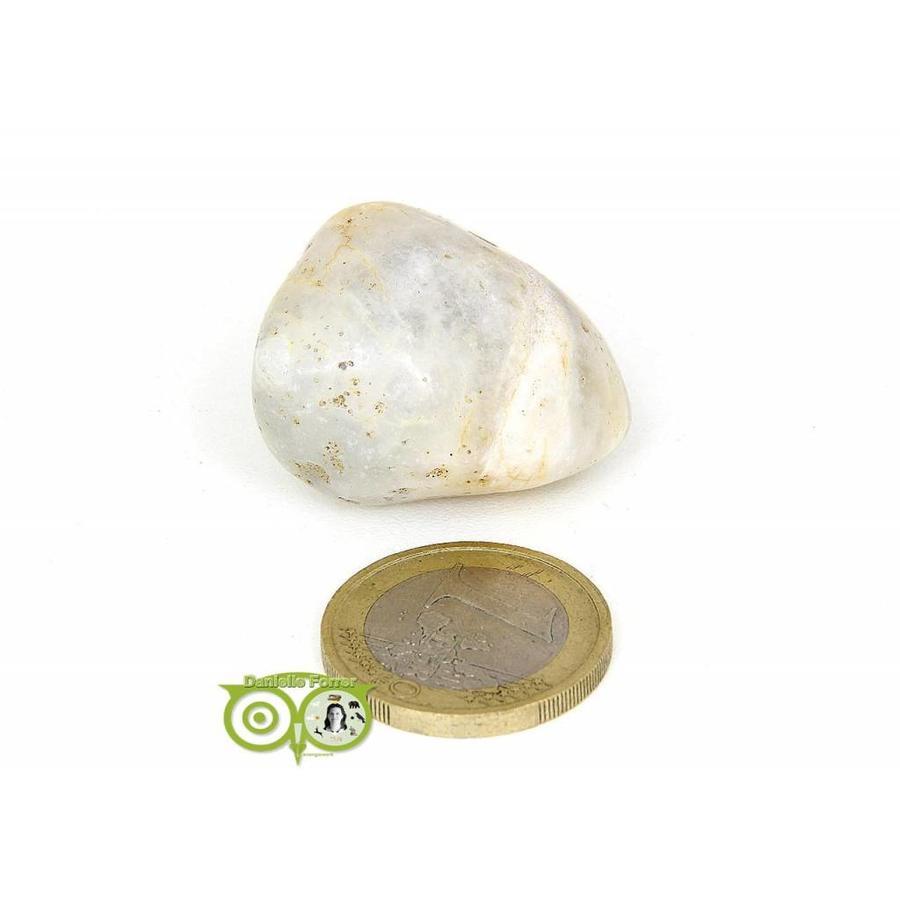 Agaat geodines AG-GE-RM-5-24-1