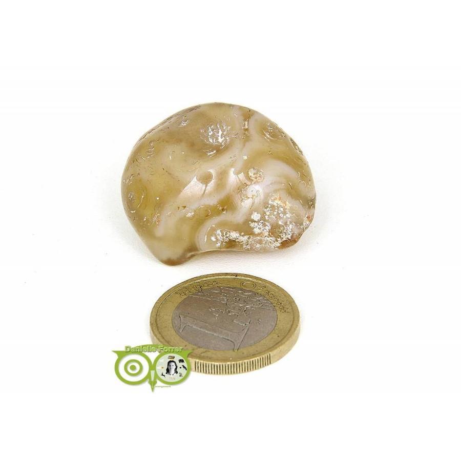 Agaat geodines AG-GE-RM-6-17-1