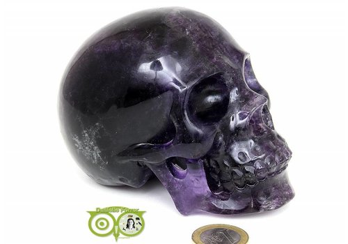 Fluoriet kristallen XL schedel 1 kilo