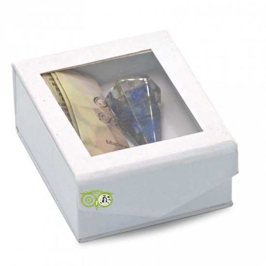 Orgon Pendel Lapis Lazuli - facet geslepen-2