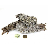 thumb-Griekse Salie Smudge sticks (Salvia Fruticosa)-2