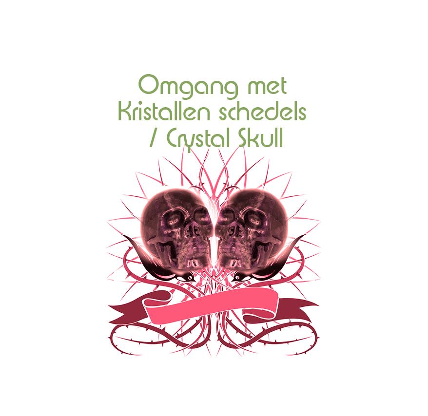 Hoe ga ik om met een kristallen schedel | Webshop Danielle Forrer | Verkoop van Crystal skulls |  Workshop Crystal skulls |  Verkoop kristallen schedels | Workshops Kristallen schedels