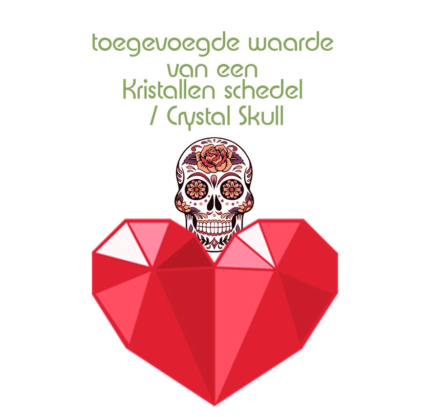 Wat is de toegevoegde waarde van een kristallen schedel ten opzichte van een kristal in een 'gewone' vorm? | Verkoop van Crystal skulls |  Workshop Crystal skulls |  Verkoop kristallen schedels | Workshops Kristallen schedels