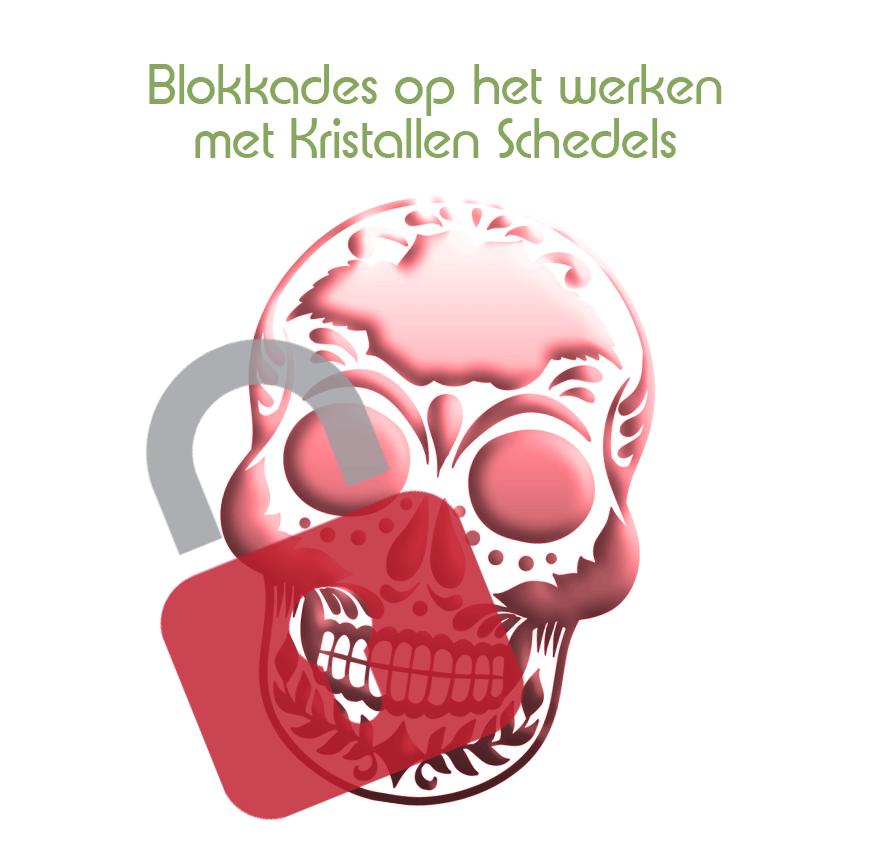 Blokkade op het werken met kristallen schedels ophelderen en verhelpen: | Webshop Danielle Forrer