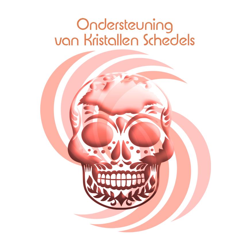 Ondersteuning van schedels | Een kristallen schedel ter algehele ondersteuning | Webshop Danielle Forrer | Verkoop van Crystal skulls |  Workshop Crystal skulls |  Verkoop kristallen schedels | Workshops Kristallen schedels