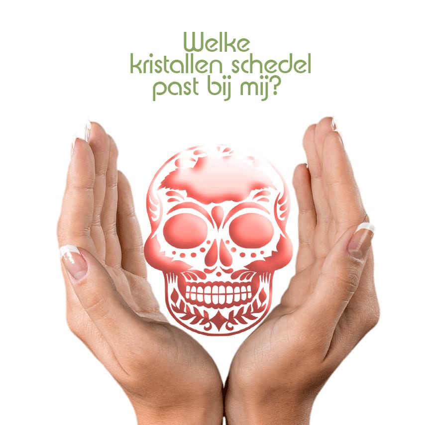 Kristallen schedel uitzoeken? Hoe weet ik of een kristallen schedel bij mij past? | Webshop Danielle Forrer
