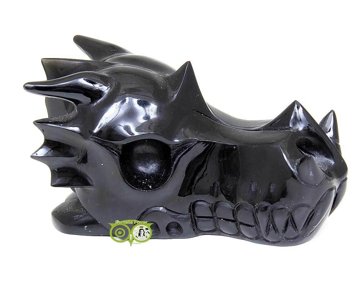 Drakenschedels | Draken schedel - Dragon skulls | Webshop Danielle Forrer