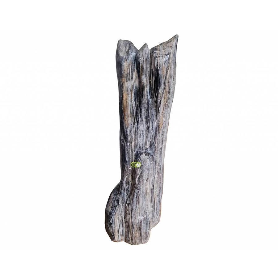Versteend hout - volledig gepolijst - Java  30,4 kg-2