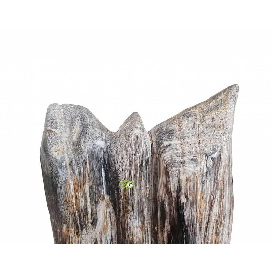 Versteend hout - volledig gepolijst - Java  30,4 kg-3