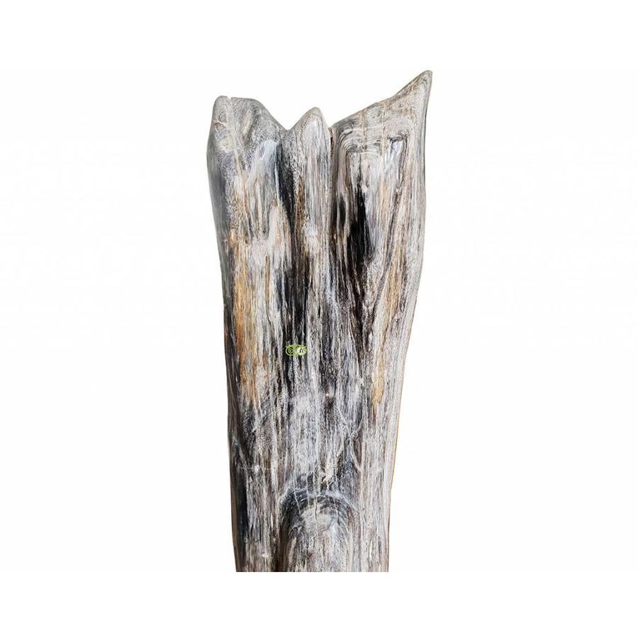 Versteend hout - volledig gepolijst - Java  30,4 kg-4