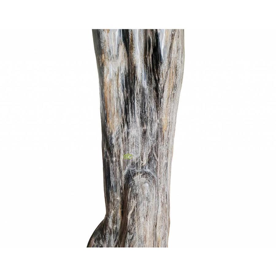 Versteend hout - volledig gepolijst - Java  30,4 kg-5