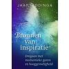 Bronnen van inspiratie - Jaap Hiddinga