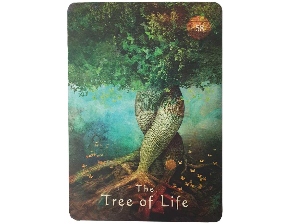 The Tree of Life | Mystical Shaman Oracle Cards Alberto Villoldo