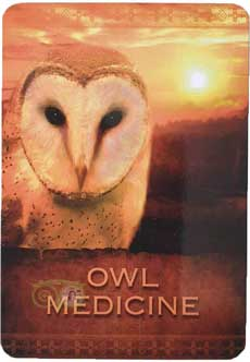 Owl Medicine | Native Spirit Oracle Cards  - Denise Linn | Webshop Danielle Forrer
