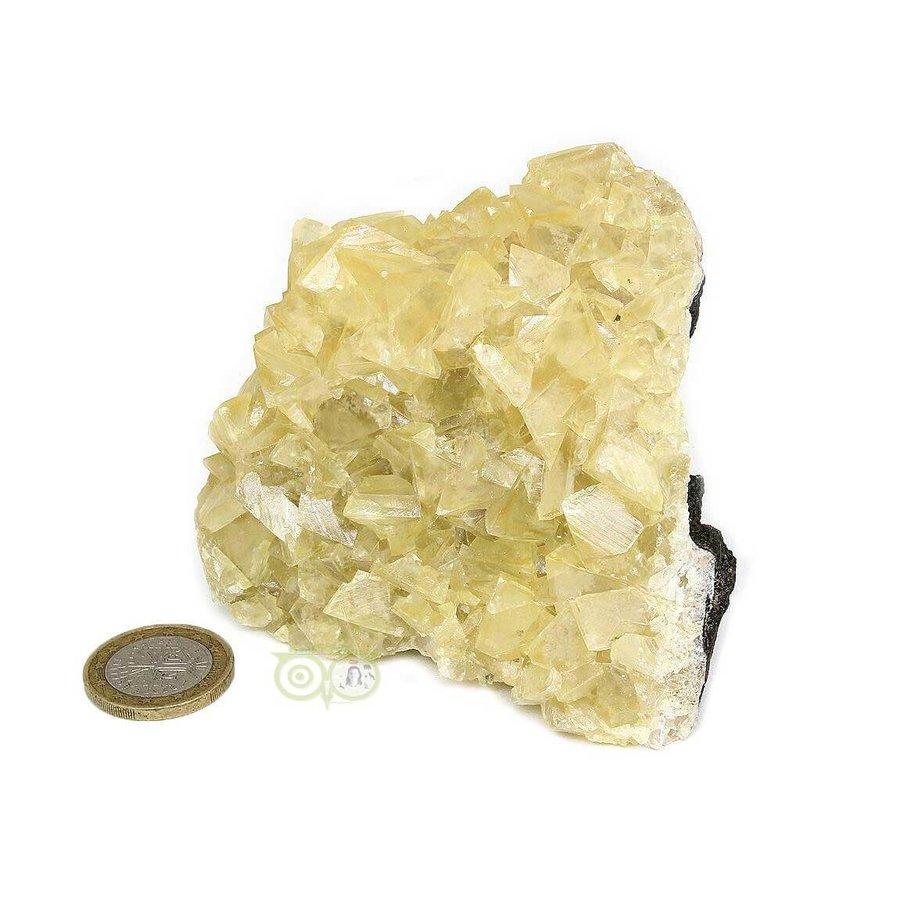 Calciet op Matrix 370 gram-7