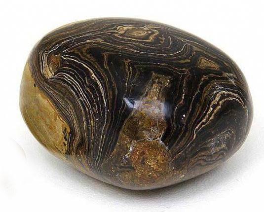 Stromatoliet kopen | Stress verminderend | Edelstenen webwinkel - Webshop Danielle Forrer
