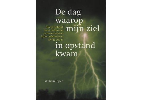 De dag waarop mijn ziel in opstand kwam - William Gijsen