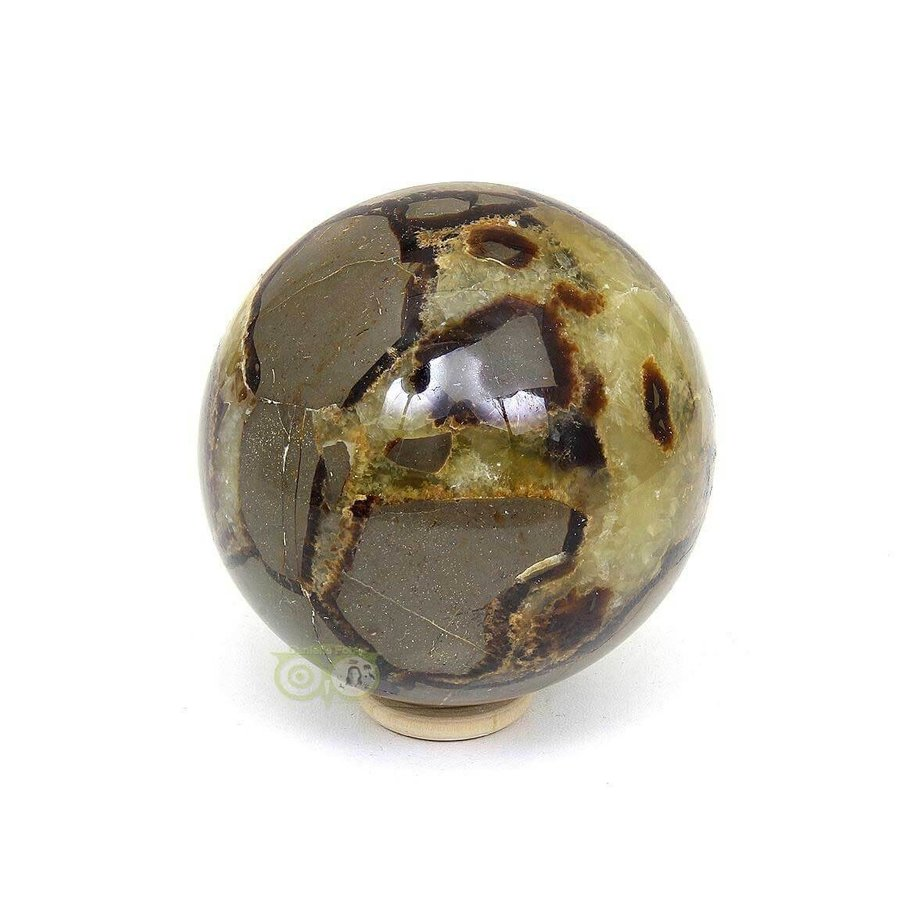 Septarie Bol 427 gram-4