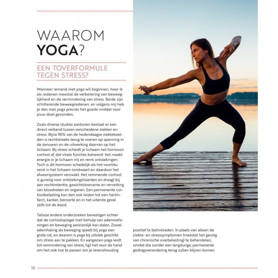 Yoga Flow Balans - Sinah Diepold-4