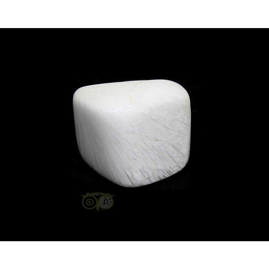 Scolesiet Knuffelsteen Nr 15 - 27 gram-3