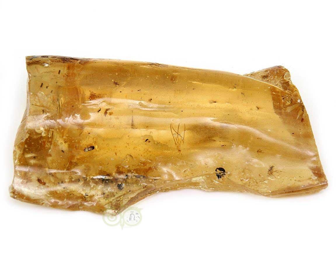 Copal met insluitsels - Madagaskar | Fossielen | Edelstenen webwinkel - Webshop Danielle Forrer