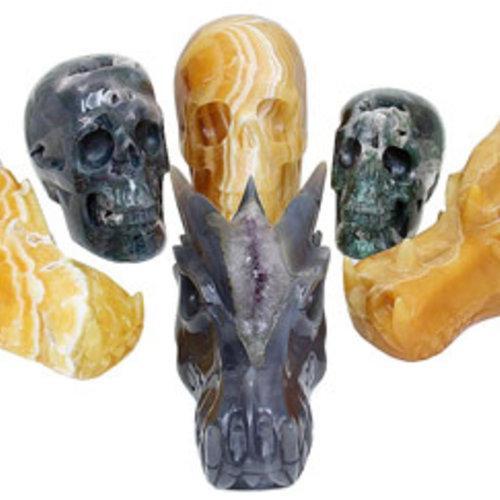 Binnenkort Nieuwe Collectie Drakenschedels