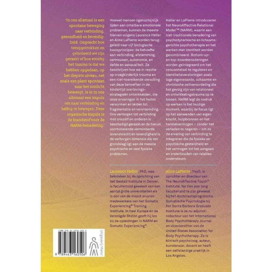 Ontwikkelingstrauma helen - Laurence Heller-2