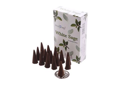 StamFord Witte Salie 15 Cones