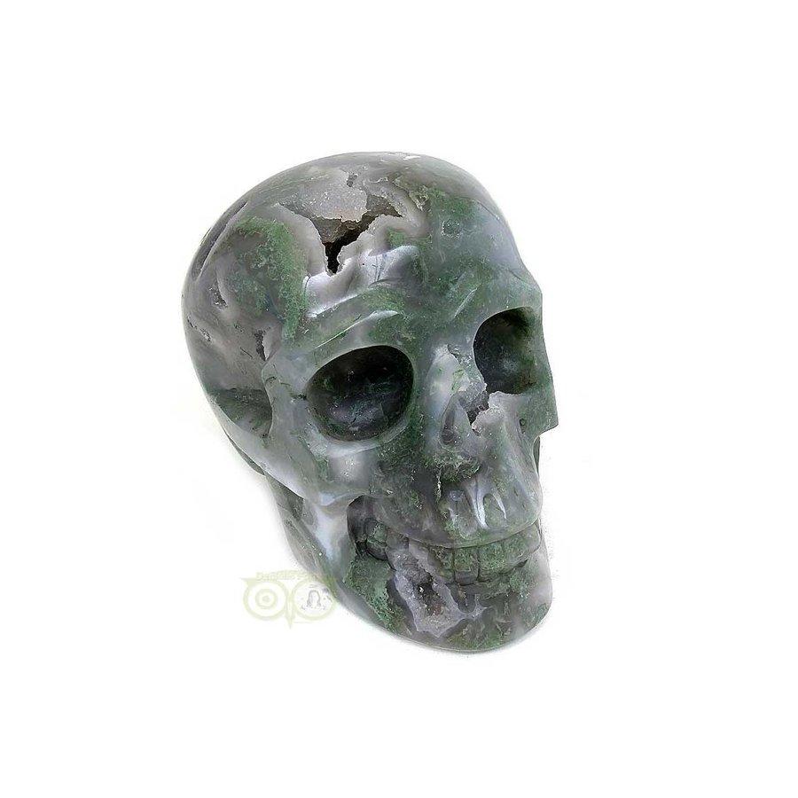 Mosagaat schedel 909 gram-3