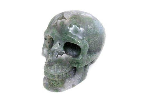 Mosagaat schedel 909 gram