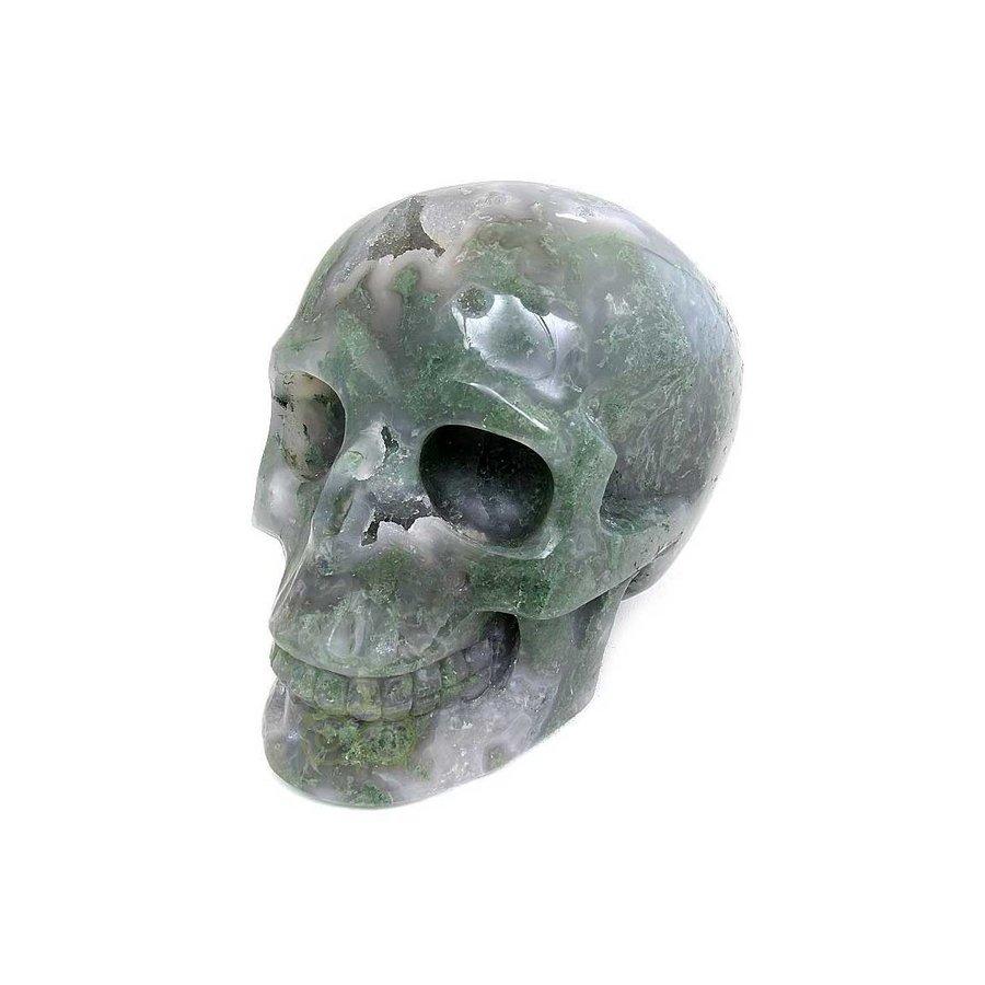 Mosagaat schedel 909 gram-1