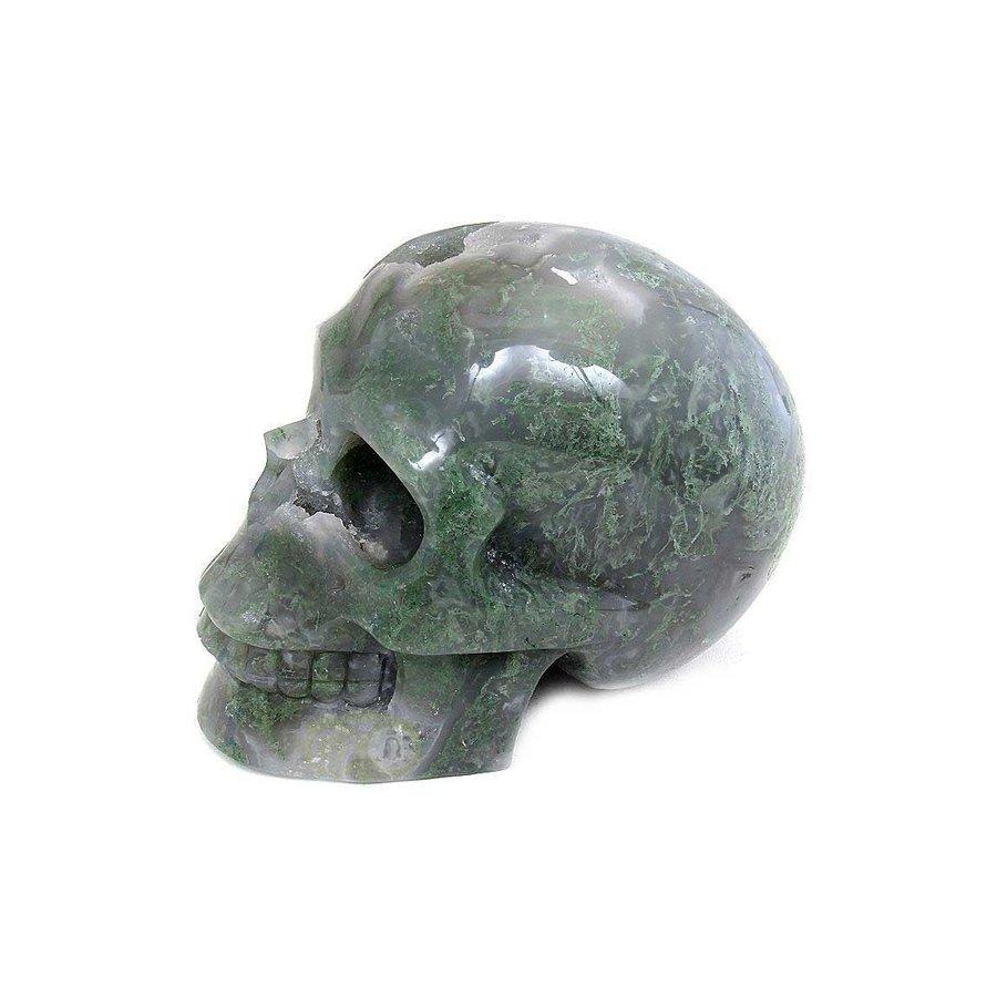 Mosagaat schedel 909 gram-2