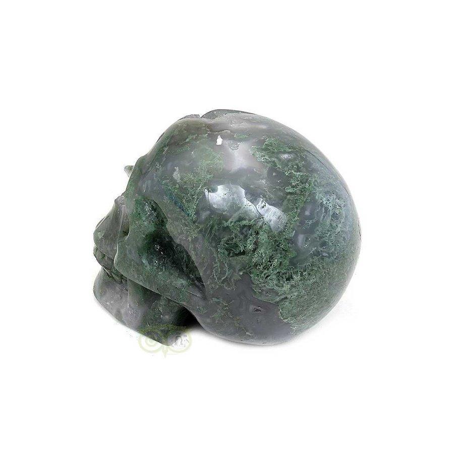 Mosagaat schedel 909 gram-4
