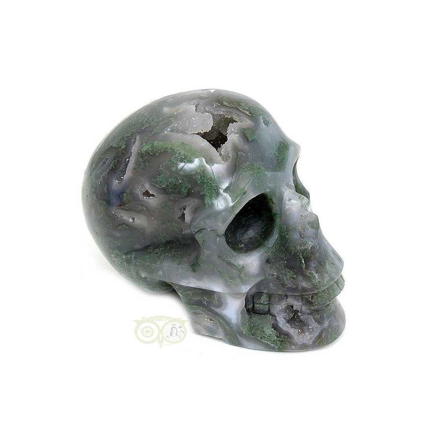 Mosagaat schedel 909 gram-7