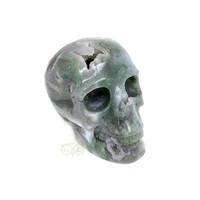 thumb-Mosagaat schedel 909 gram-8