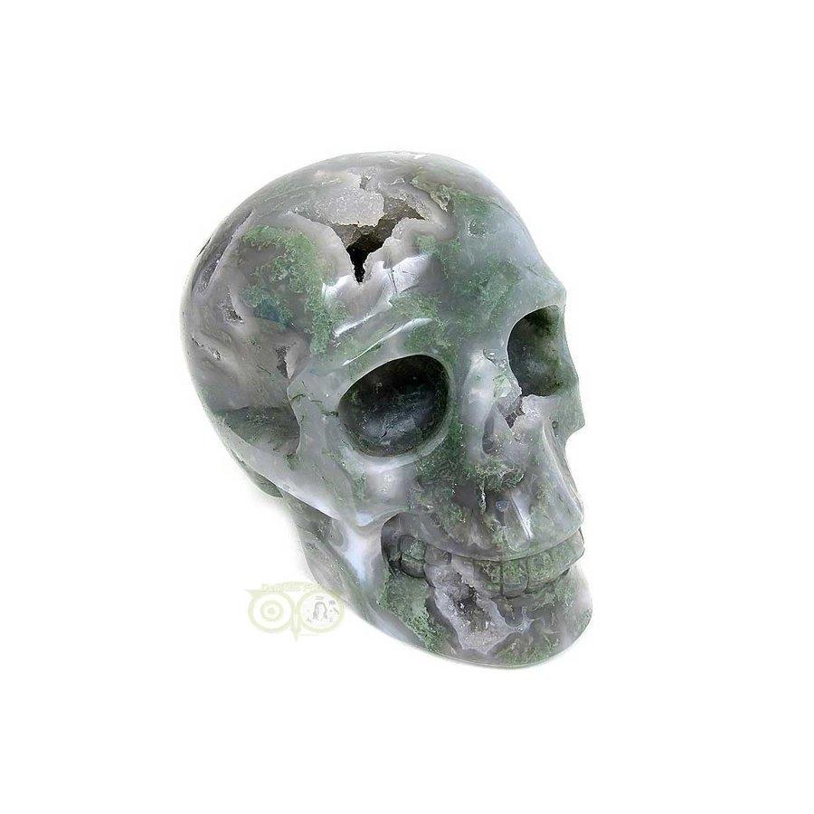 Mosagaat schedel 909 gram-8