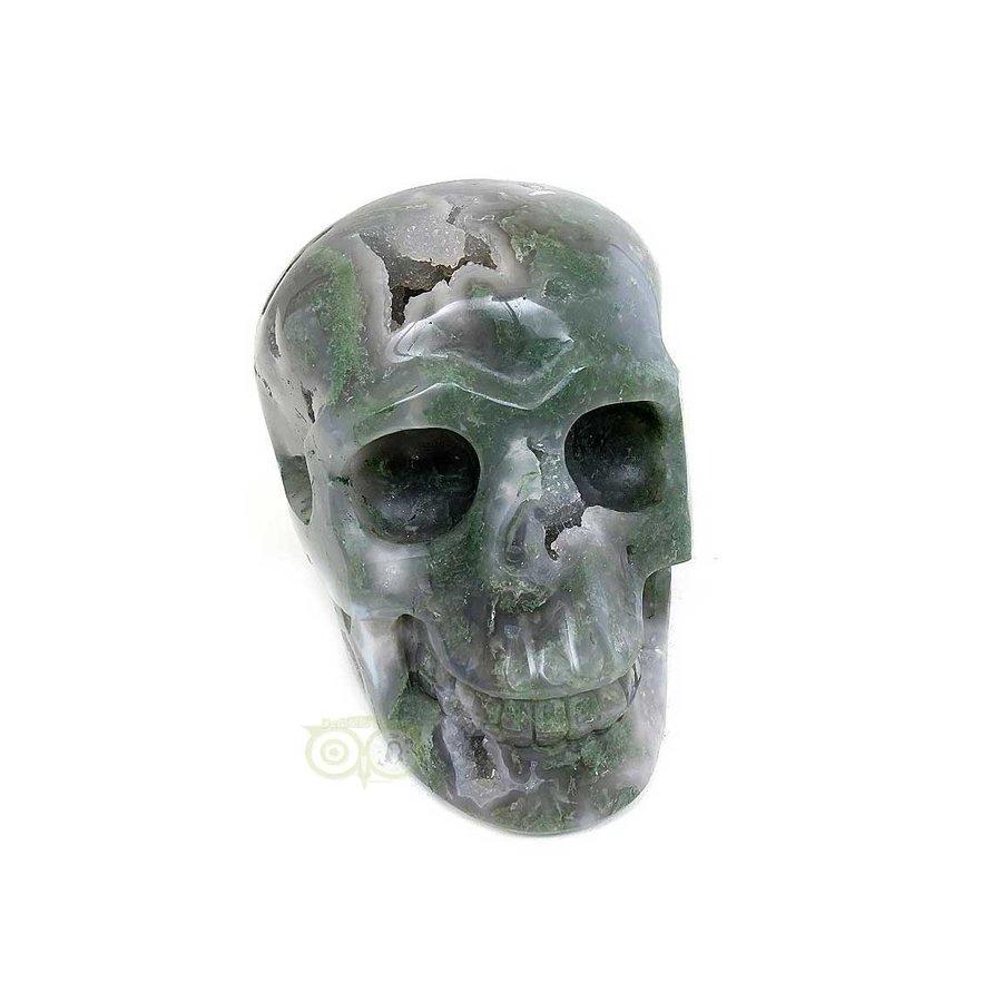 Mosagaat schedel 909 gram-9
