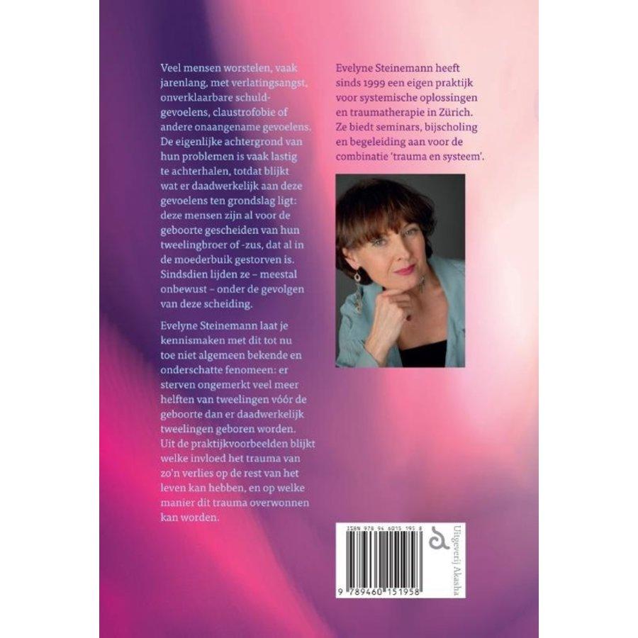 De verloren tweelinghelft - Evelyne Steinemann-2