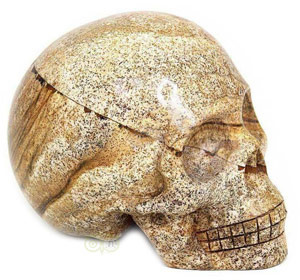 Landschaps Jaspis schedels | Kristallen schedel kopen | Jaspis edelstenen schedel | Edelstenen Webwinkel - Webshop Danielle Forrer