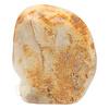 Fossiel koraal sculptuur Nr 1 - 683 gram