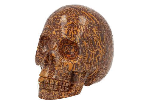 Sanskrite Stone Jaspis Schedel 269 gram