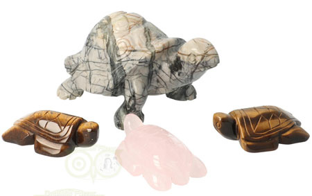 Schildpad| Edelsteen schildpad | Schildpadden | Edelstenen Webwinkel - Webshop Danielle Forrer