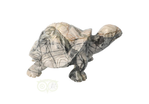 Picasso Jaspis Schildpad Nr 4