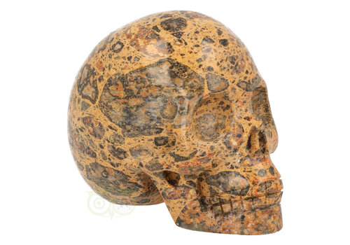 Jaspis Breccie Schedel 255 gram