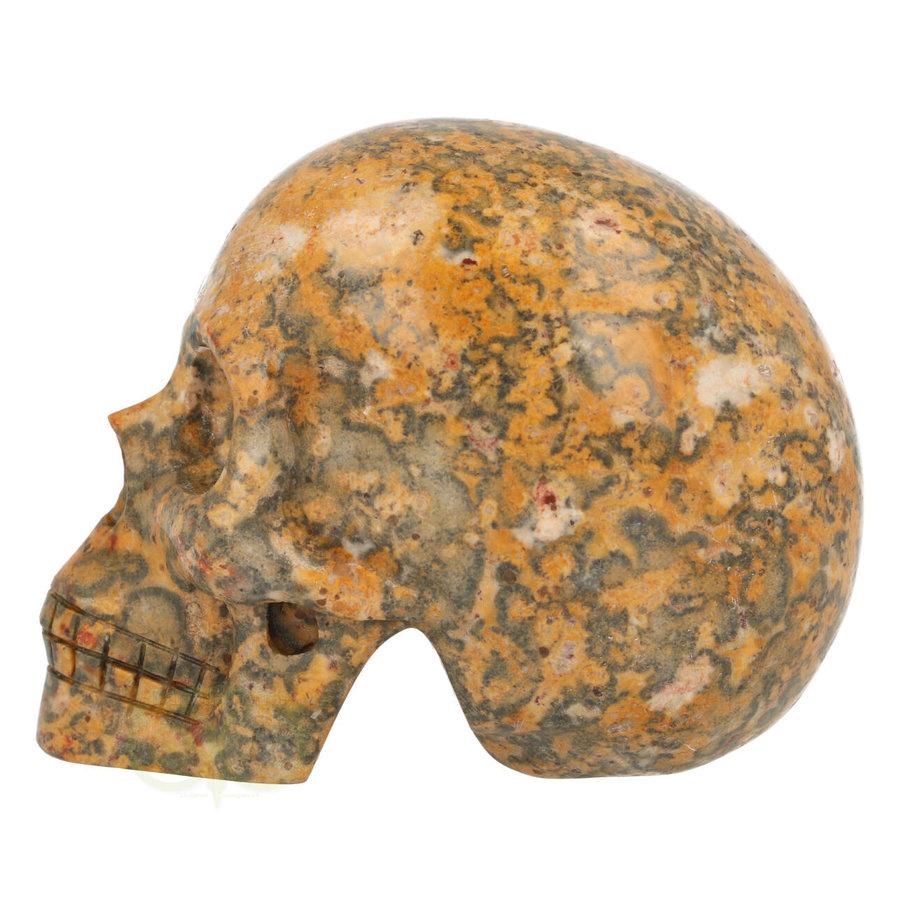 Jaspis Breccie kristallen schedel 260 gram-6