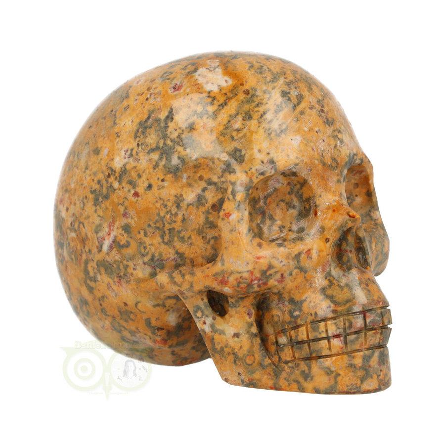Jaspis Breccie kristallen schedel 260 gram-1