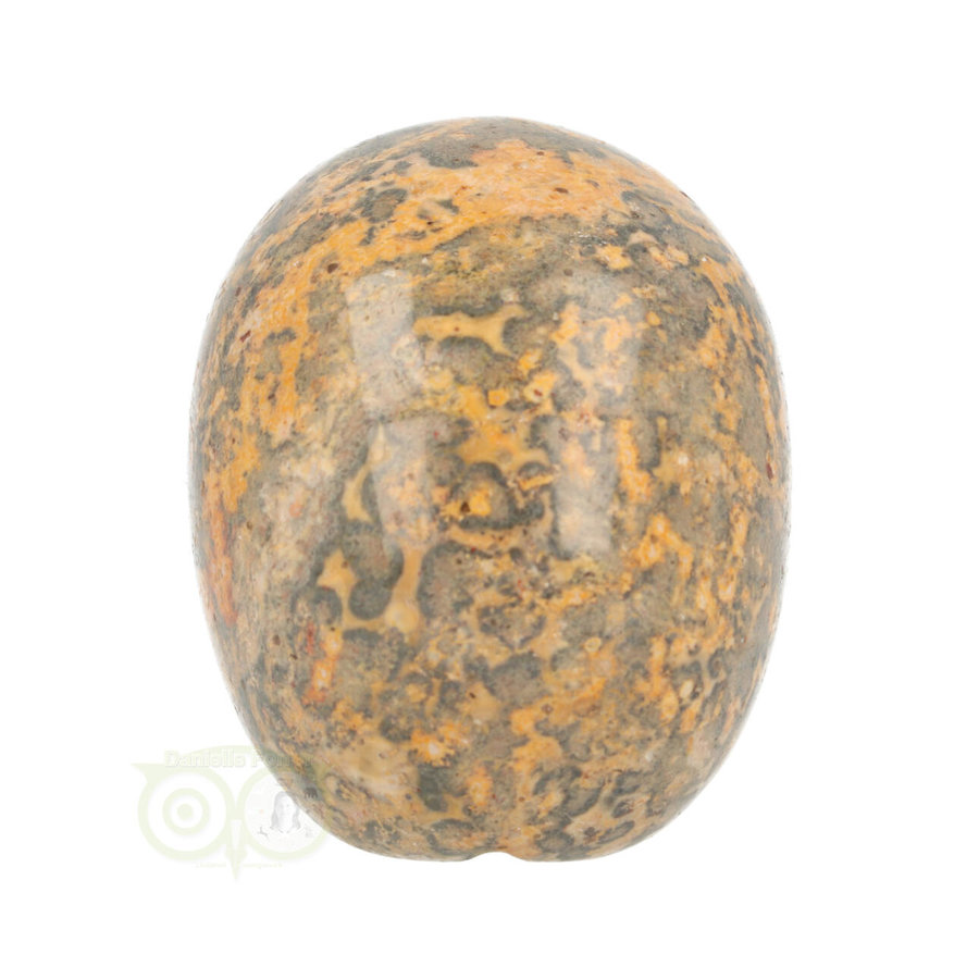 Jaspis Breccie Schedel 267 gram-7